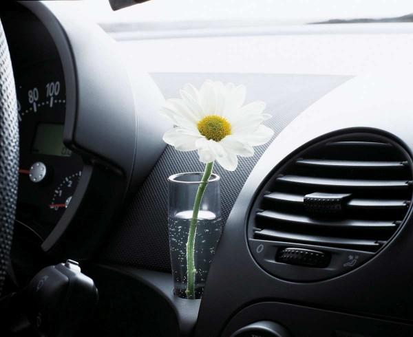 07-Kafer-Blumenvase